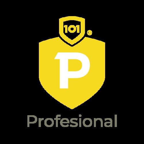 Datos101 Profesional